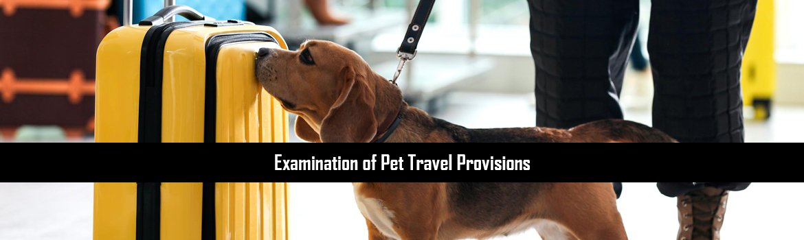 Examination of Pet Travel Provisions
