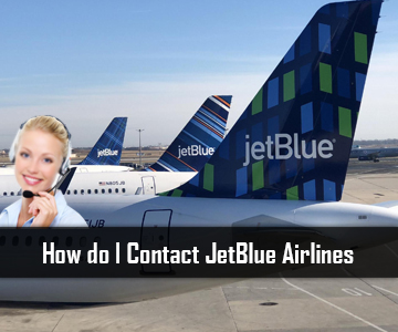 How do I Contact JetBlue Airlines