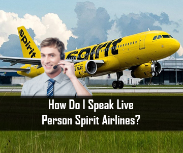 How Do I Speak Live Person Spirit Airlines?