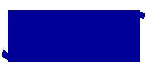 sas-Airlines-Logo